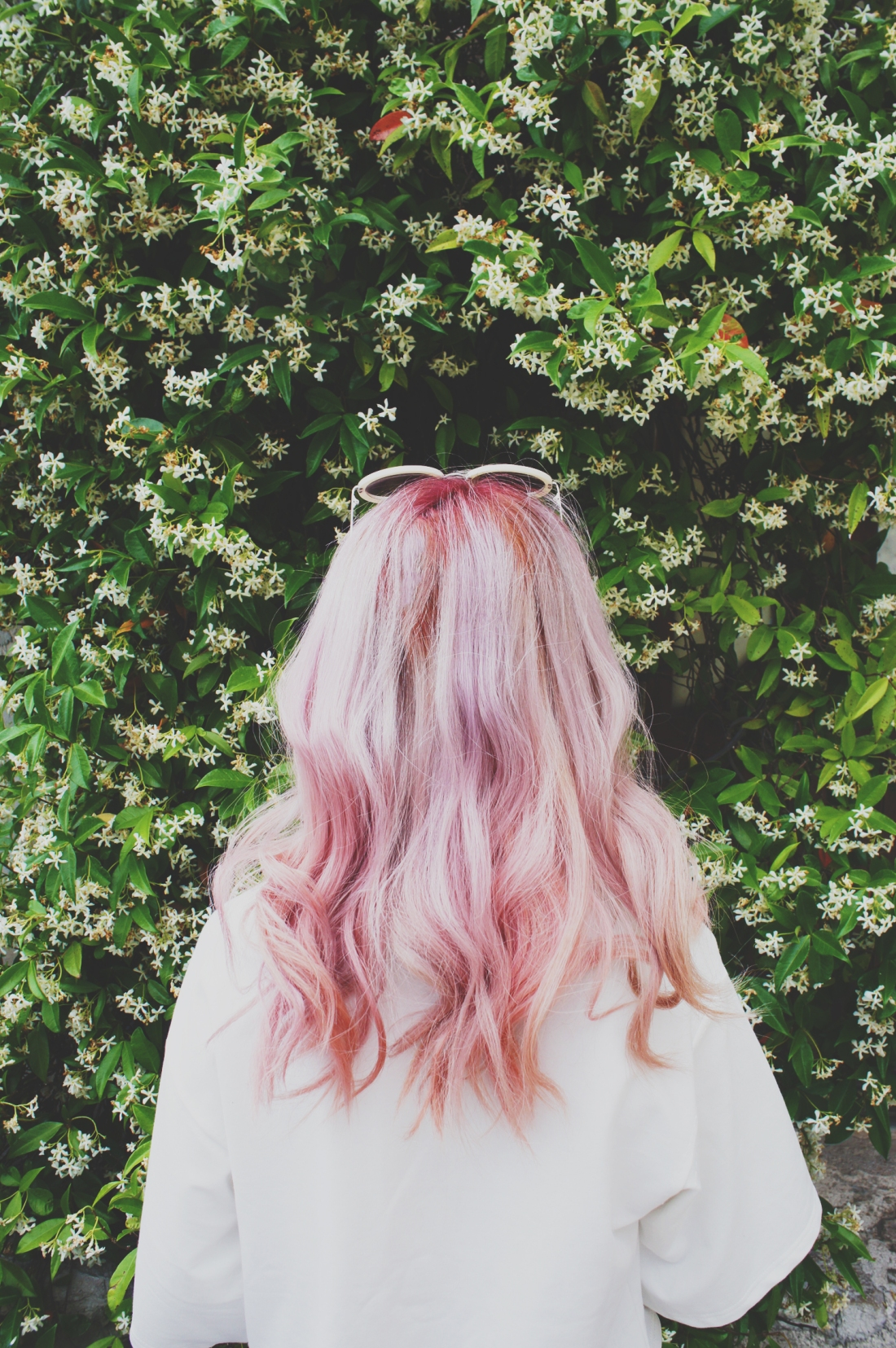 Bun pink hair